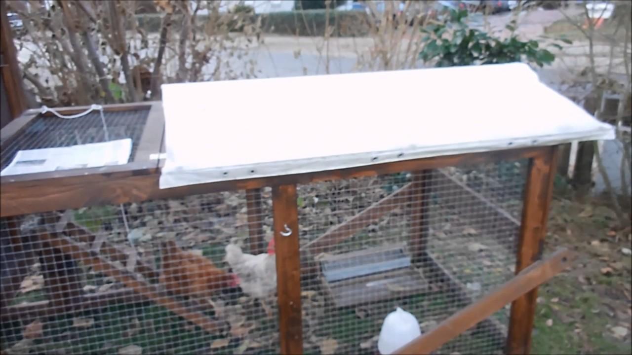 vogelgrippe stallpflicht f r unsere h hner youtube. Black Bedroom Furniture Sets. Home Design Ideas