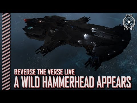 Star Citizen: Reverse the Verse  A Wild Hammerhead Appears