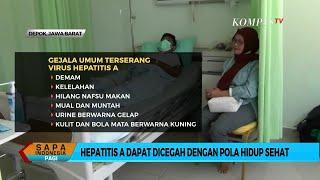 Mengenal Penyakit Hepatitis.