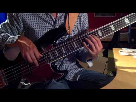 Gary Jules - Mad World (Bass Cover)