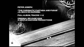 "Peter Joseph - J.S. Bach on Marimba, ""Chromatic Fantasia and Fugue"" Full Album, 2002"