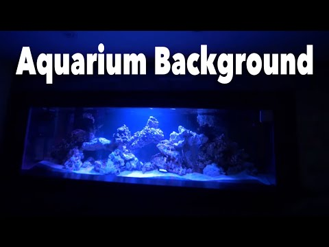 How To Aquarium Vinyl BACKGROUND