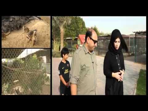 Dubai's Only Outdoor Pet Farm - Part 1   eZePets