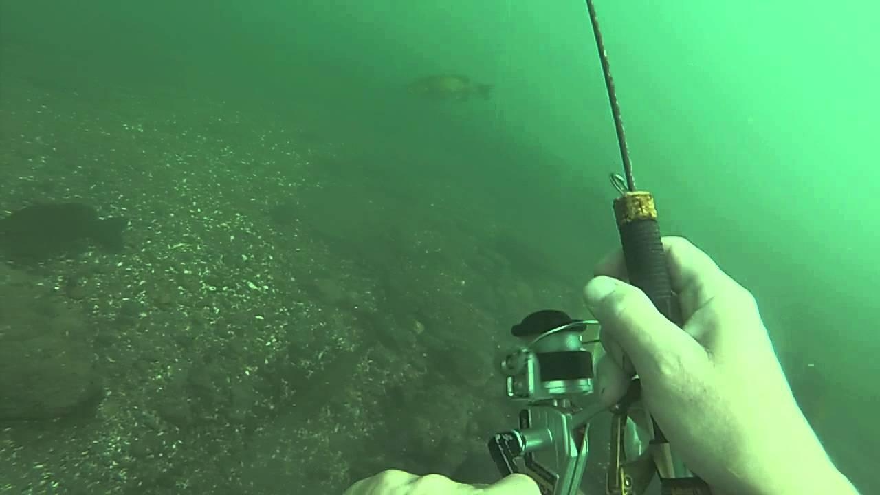 Upper niagara river underwater fishing wicked bass hit for Niagara river fishing report