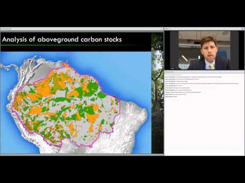 Forest Carbon Assessment in the Amazon's Indigenous and Protected Areas