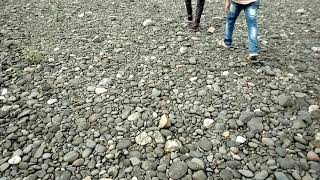 Narmada River || Poicha