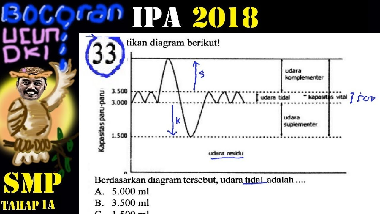 Prediksi Un Ipa Smp 2018 Bocoran Ucun Ujicoba Un Dki 1a No 33 Grafik Volume Pernafasan Youtube