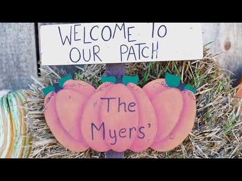 Radio Bristol Farm Report - Myers Pumpkin Patch