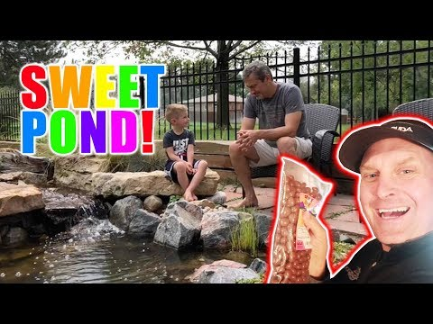 SWEET POND for the Snack Lady: Greg Wittstock, The Pond Guy Mp3