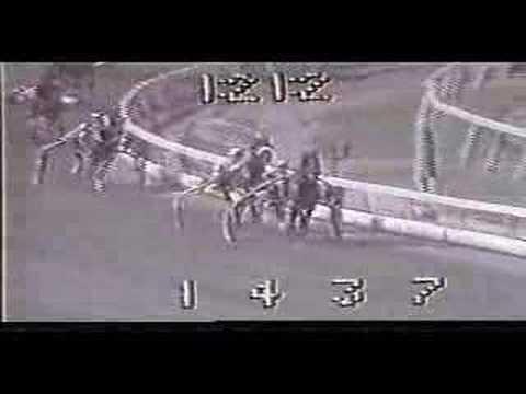 Nihilator World Record Fastest Pace Mile Harness Horse
