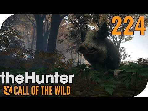 THE HUNTER: CALL OF THE WILD #224 - UNSICHTBARE SAUEN! 🐗 || PantoffelPlays
