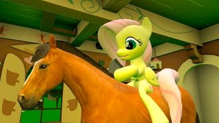 Fluttershy and a Horse