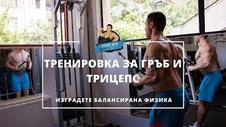 Тренировка за Гръб и Трицепс  [Подробно разяснение] ✔
