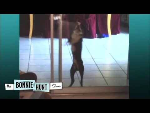 Bonnie Hunt Caught Dancing At Christmas Party - THE BONNIE HUNT SHOW