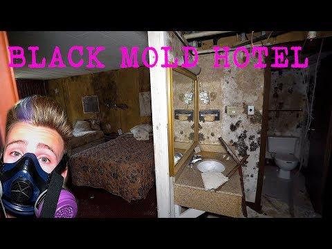 Abandoned Days INN hotel - Black Mold Infestation   Exploring With Josh