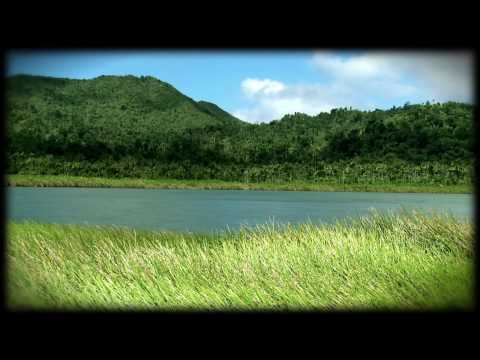 Wild Grenada#01