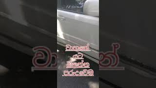 වාහනේ යට බලලාම ගමන යමු care pets before start your vehicle