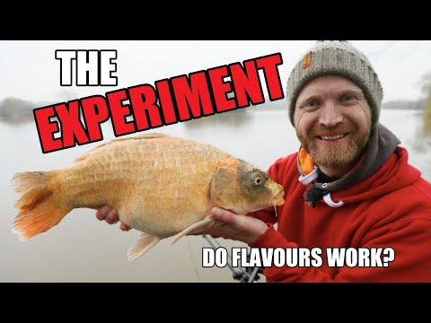 FEEDER FISHING For CARP - FLAVOURINGS - Part Two - Barston - Rob Wootton