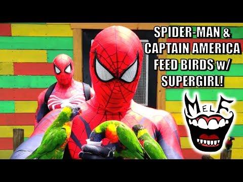 Spider-Man & Captain America Feed Birds! Marvel Avengers Parody