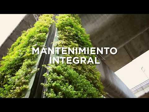 VIA VERDE. Mantenimiento Jardines Verticales del Periférico CDMX