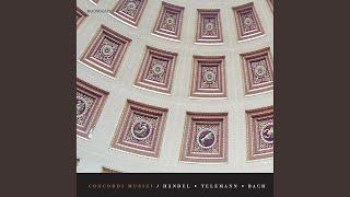Trio Sonata No. 5 in C Major, BWV 529 (arr. for recorder and harpsichord) : II. Largo