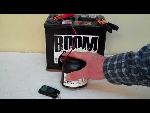 Horse Whinny Sounds Car Horn #1 Wireless