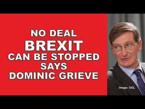 not-too-late-to-stop-no-deal-brexit-says-dominic-grieve!
