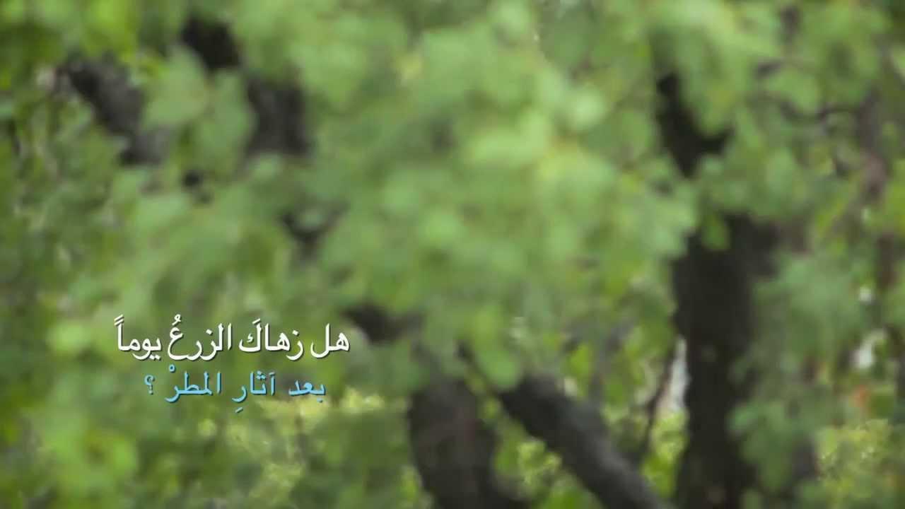 اترك أثرا لـ أ.أمل الشقير - YouTube