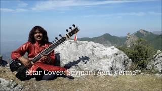 Jaiye Aap Kahan Jayenge   Sitar Cover Surmani Agni Verma