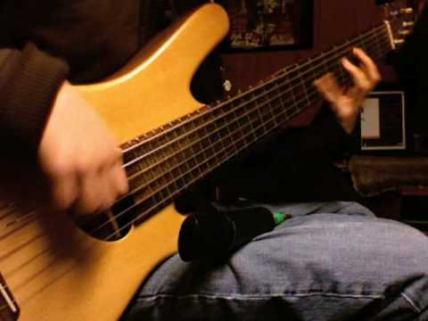 Solo 6 String Acoustic Bass