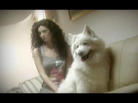 Simplu ft. Cream - Jumatatea ta (Official Video) - 2003
