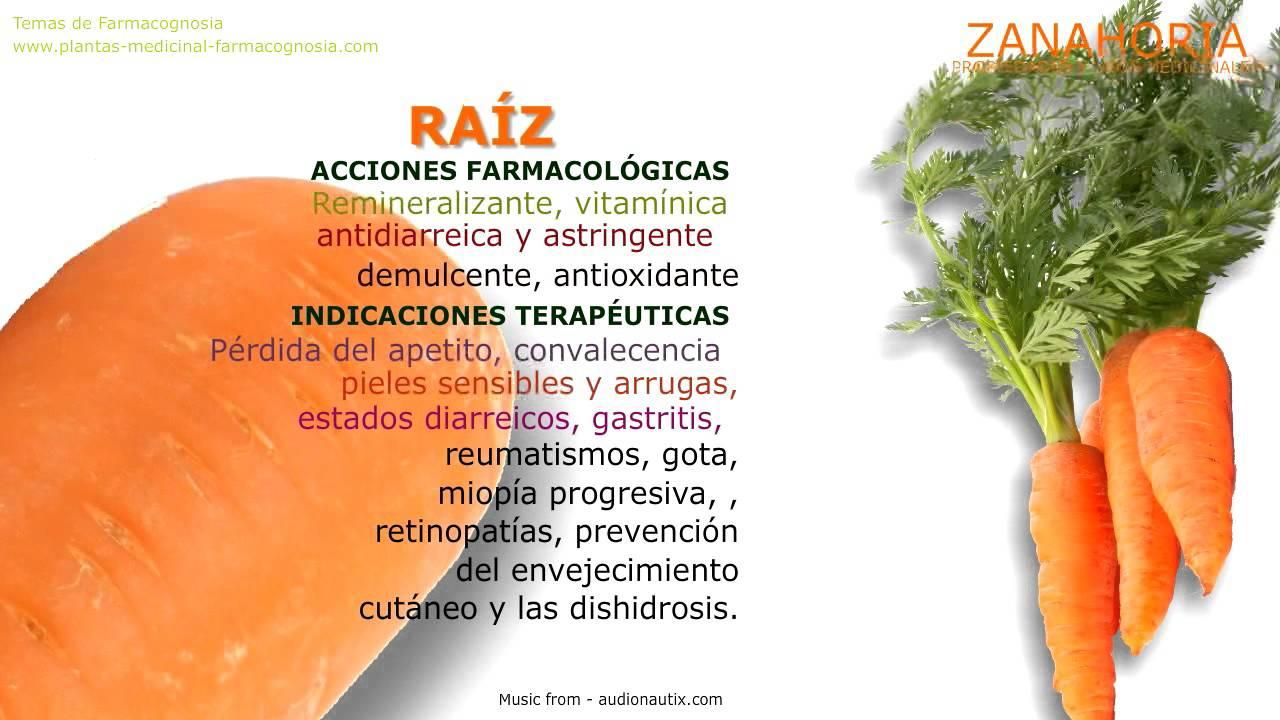 Zanahoria propiedades y beneficios youtube for La zanahoria es una hortaliza