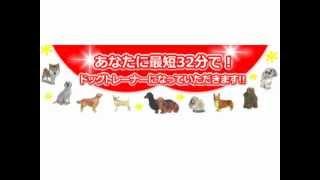 詳細はこちら http://www.infotop.jp/click.php?aid=44697&iid=25065 犬...