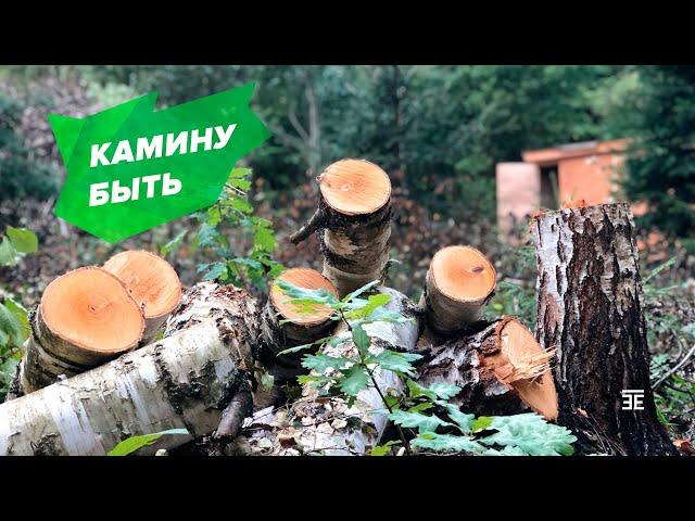 СПД2. КАМИНУ БЫТЬ! Бонусы чистки заросшего лесом участка