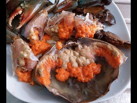 【20無限】 :  清蒸膏蟹 (終於買到一隻爆膏的) 加蟹寄生蟲 /心板茗荷Steamed female crab with crab parasites