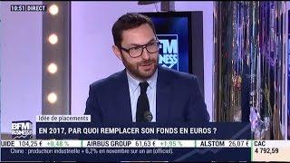 En 2017, par quoi remplacer son fonds en euros ?