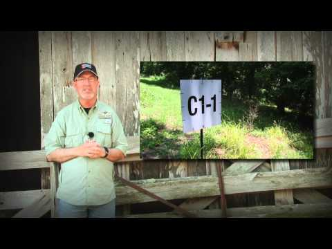 Tips To Improve Your Deer Hunting Property (#189) @GrowingDeer.tv