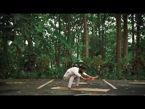 Bhujapidasana - Shoulder Pressing Pose