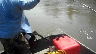 Pesca Blanquillo Rio Ichilo