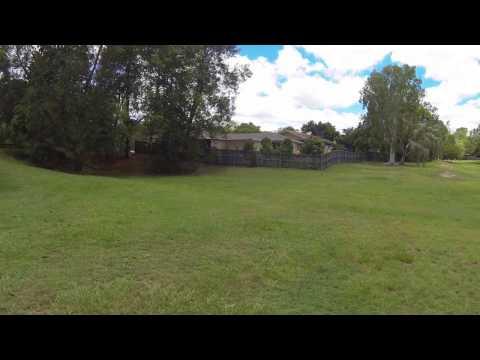 Delapine Grove Park, Seventeen Mile Rocks (QLD) - dogexplorer.com.au