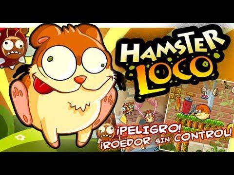Игра hamster loco
