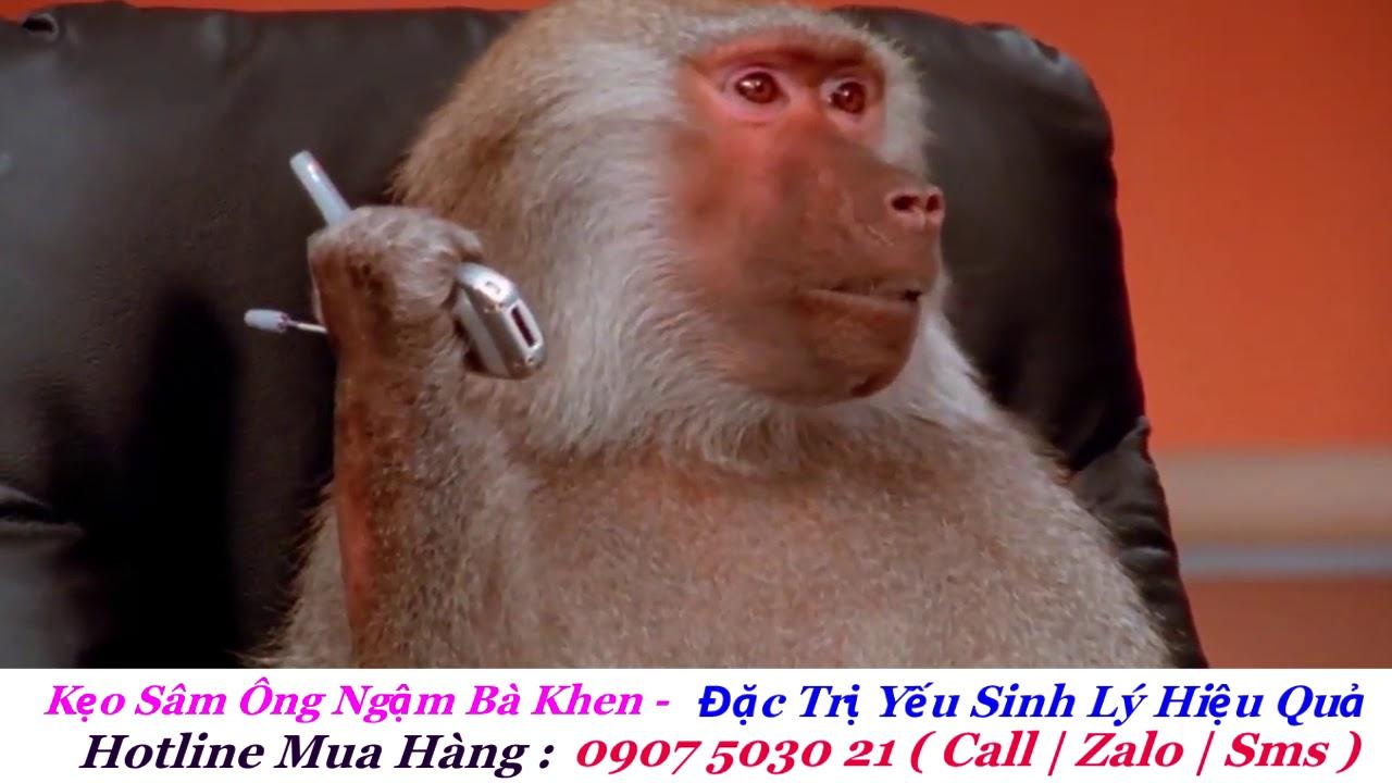 Thánh Lồng Tiếng | Cuộc Nói Chuyện Bá Đạo Của Vợ Chồng Khỉ