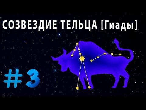 Как выглядит созвездие телец на небе
