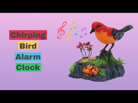 Chirping Bird Alarm Clock - Toy Automation With ESP8266 - Baba Awesam