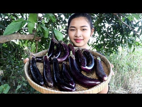 Awesome Cooking Fry Aubergine Eggplant With Pork Delicious Cook Recipe – Village Food Factory