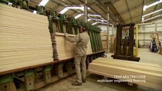 Trap Multrifloor  - The art of Making Multilayer Wooden Floor