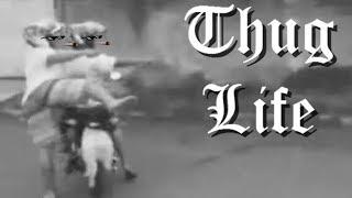 OS REIS DO THUG LIFE   THE KING OF THUG LIFE #36