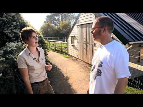 Simon's Wight: Isle of Wight Zoo Adventure