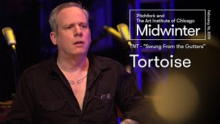 """Tortoise 
