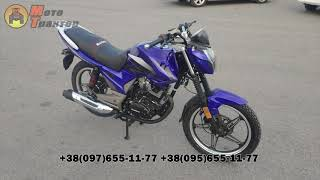 Обзор мотоцикла Musstang Region 200